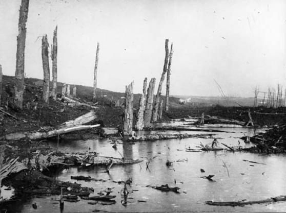Beaucourt AncreSept 1916
