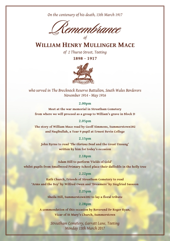 William Mace programme