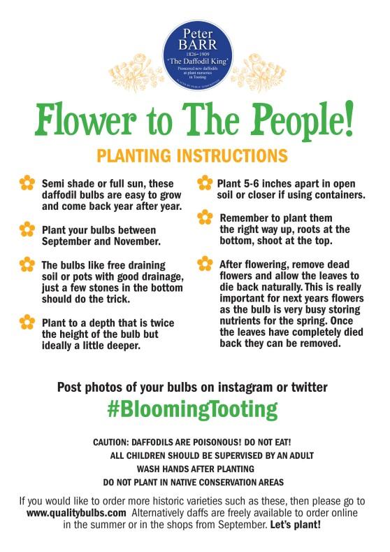 PlantingInstructionsBIG