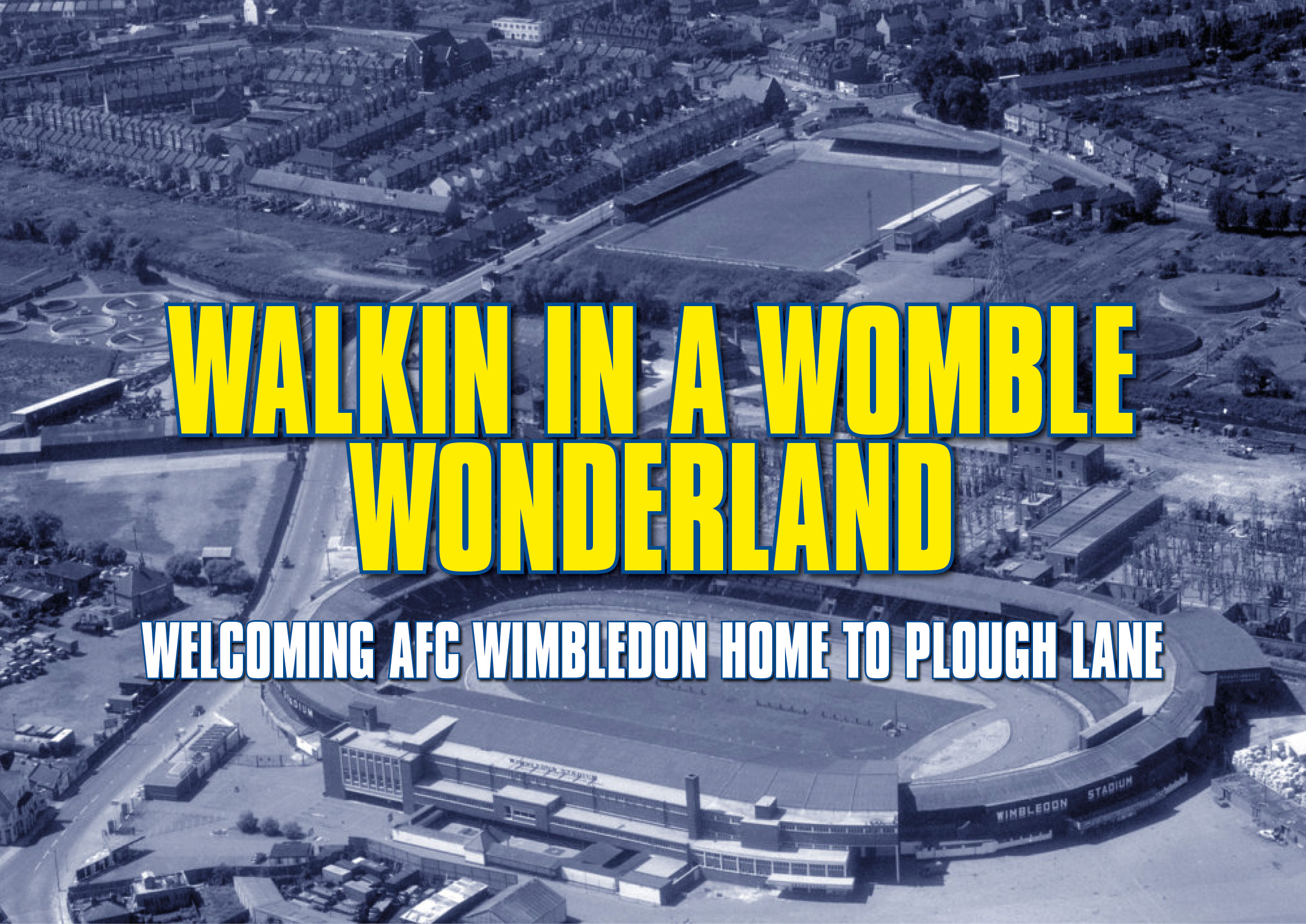 WombleWonderland