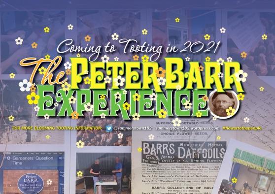 PeterBarrExperience2